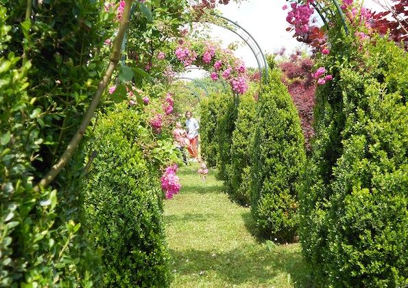Les RDV aux jardins
