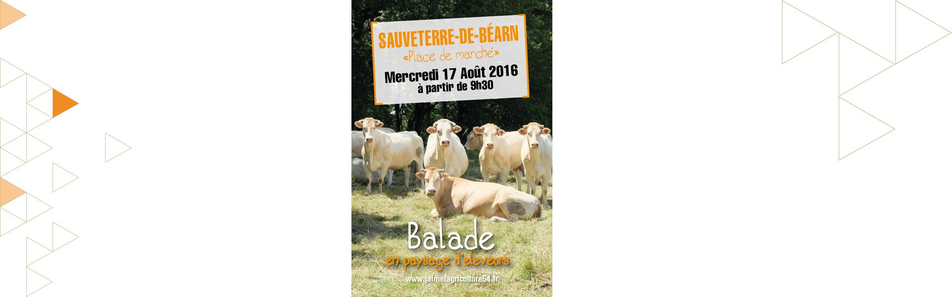 Le 17 août, venez faire une balade pleine d'air frais et rencontrez les blondes d'Aquitaine à Sauveterre-de-Béarn !