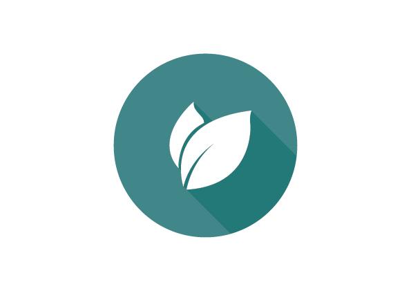 Environnement / Énergie / Développement durable