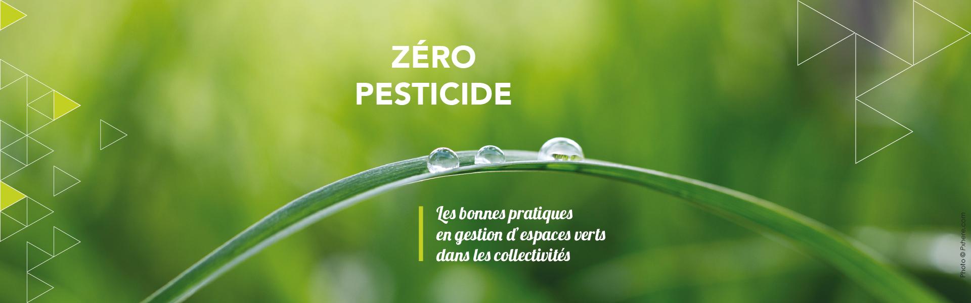Votre commune n'utilise plus de pesticides...et vous ?